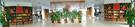校园飘逸书香 书香浸润生命 ——新疆温宿县第二小学星级校园书屋