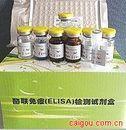 包膜蛋白gp120(Gp120)ELISA试剂盒