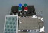 小鼠神经特异性烯醇化酶(NSE)ELISA试剂盒|检测价格 进口