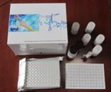 RNASE试剂盒,人核糖核酸酶ELISA试剂盒