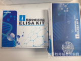 小鼠EGF 检测试剂盒