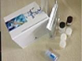 泛素激活酶ELISA试剂盒厂家代测,进口人(E1/UBAE)ELISA Kit说明书