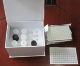 LZM试剂盒,人溶菌酶ELISA试剂盒价格