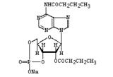 二丁酰环磷腺苷钠/Bucladesine Sodium   CAS No.:16980-89-5