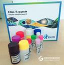 KAT,小鼠犬尿氨酸氨基转移酶ELISA试剂盒免费代测
