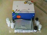 人c-jun ELISA试剂盒