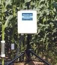 Flow32-1K包裹式植物茎流测量系统