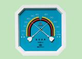 温湿表WSB-A1型