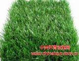 供应人造草坪 人工草坪