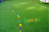 幼兒園專用人造草坪