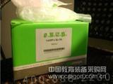 质粒大量提取试剂盒