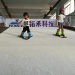 健身房滑雪机 冰雪运动体验设备 广东健身房室内滑雪机厂家