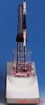 自动电位滴定仪-电极(Electrode)