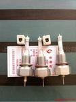 DJM1815-115 高温高压电极 电接点电极