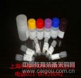 小鼠骨桥素(Osteocalcin)ELISA Kit   试剂网
