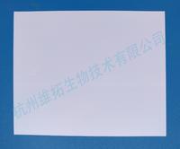 熒光定量專用封板膜