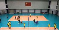 排球運動地膠 排球塑膠地板