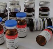5'-胞苷酸