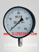 氨压力表/氨压力仪/氨压力