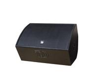 TD TM-550 单十五寸同轴舞台监听音箱