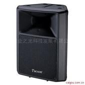 音箱 TUCSON  E-12 专业音箱