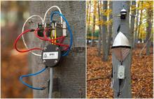 EMS81多通道樹木連續生長及莖流測量系統