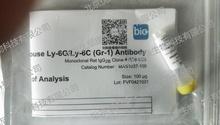 R&D/安迪生物 mGr-1 MAb (Cl RB6-8C (100 ug) MAB1037-100