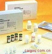 人补体1抑制物抗体(C1INH)酶联免疫(Elisa)试剂盒