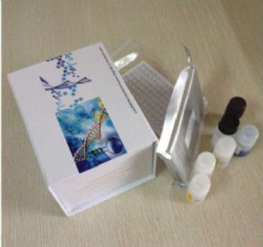 人结肠癌抗原(CCA)ELISA试剂盒