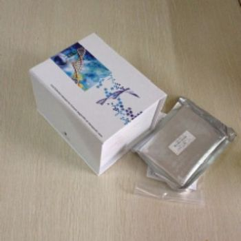 自身免疫调节因子(AIRE)检测试剂盒(酶联免疫吸附试验法)