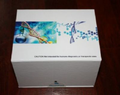 人白介素2受体(IL-2R)ELISA试剂盒价格