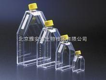 透气盖细胞培养瓶