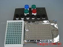 人凝血酶血栓调节蛋白复合物(T-TM)ELISA试剂盒