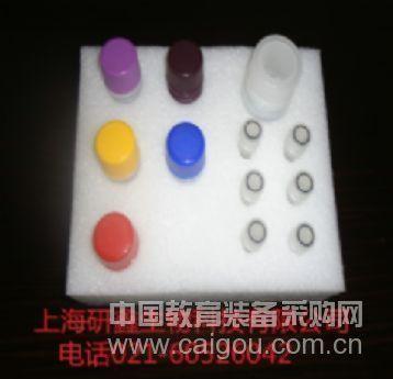 LFRT3 酶免试剂盒