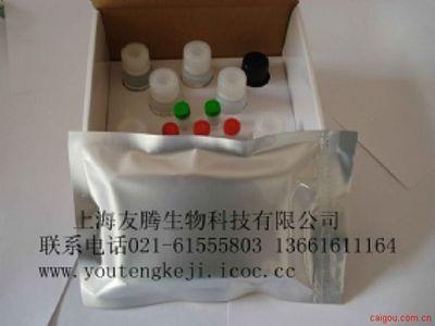 大鼠血管性血友病因子(VWF)ELISA试剂盒
