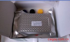 兔子Ⅰ型前胶原N端前肽(PⅠNP)ELISA Kit=Rabbit procollagen Ⅰ N-terminal peptide,PⅠNP ELISA Kit