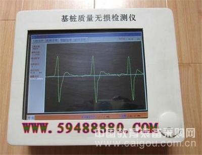 基桩质量无损检测仪 型号:WFZX-10Z