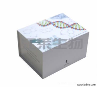 小鼠趋化因子(FK)ELISA试剂盒说明书