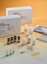 人(MR)ELISA试剂盒,甘露糖受体ELISA检测试剂盒