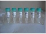 进口标准品CAS号:67-97-0N/A(non-d)标准品胆骨化醇-d7