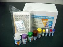 小鼠CTX-2试剂盒(骨退化特异标志物)ELISA试剂盒提供专业售后