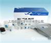 大鼠抗环胍氨酸肽抗体(Anti-CCP-antibody)ELISA Kit