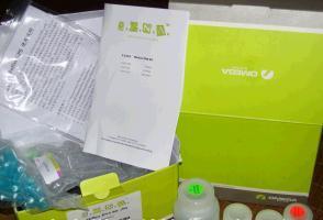 96孔板病毒RNA纯化试剂盒