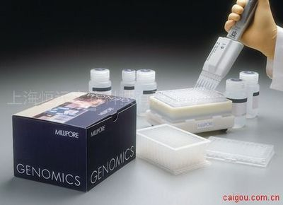 人基质裂解素(ST2)ELISA试剂盒