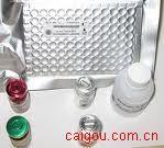 血管内皮生长因子受体2(VEGF-R2)ELISA kit