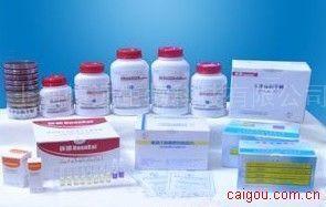 半乳糖氧化酶