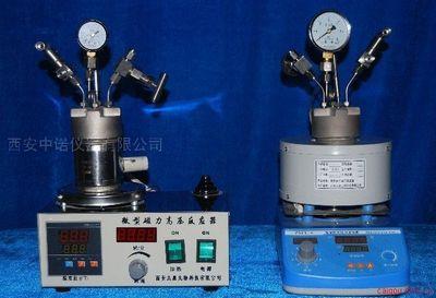 不锈钢小型高压反应釜 催化反应釜 均象反应釜
