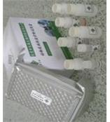 小鼠网膜素试剂盒/小鼠omentin ELISA试剂盒