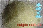 大孔吸附树脂D101/Amberlite XAD2离子交换大孔吸附树脂/Resin D101/Amberlite XAD2
