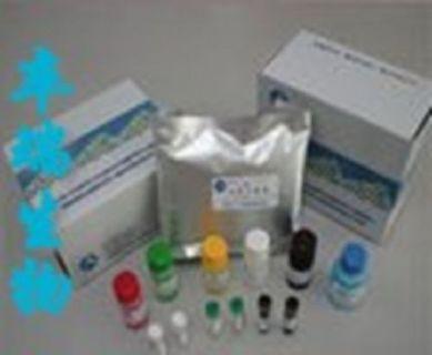 人Elisa试剂盒:角化细胞生长因子(KGF)Elisa试剂盒